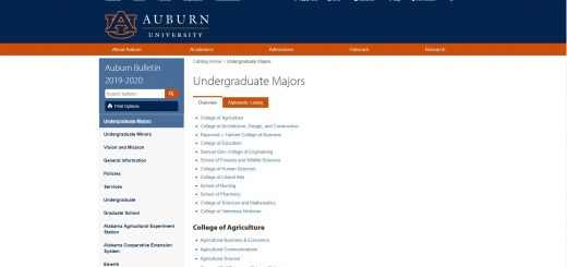 Auburn University Undergraduate Business