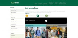 Babson College Undergraduate Business
