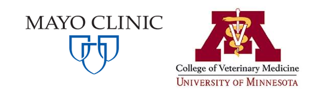 Best Medical Schools in Minnesota
