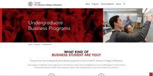Cornell University Undergraduate Business