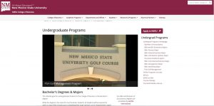 New Mexico State University Undergraduate Business