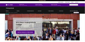 New York University Undergraduate Business