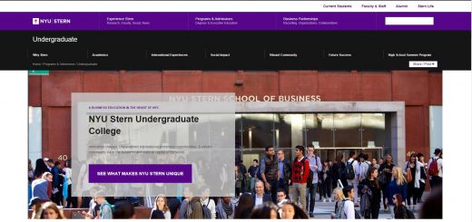 New York University Undergraduate Business