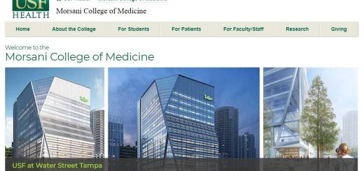 The College of Medicine at University of South Florida