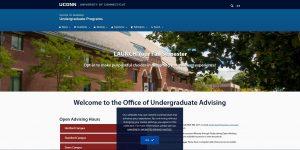 University of Connecticut Undergraduate Business