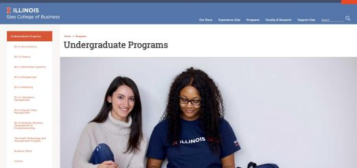 University of Illinois-Urbana-Champaign Undergraduate Business