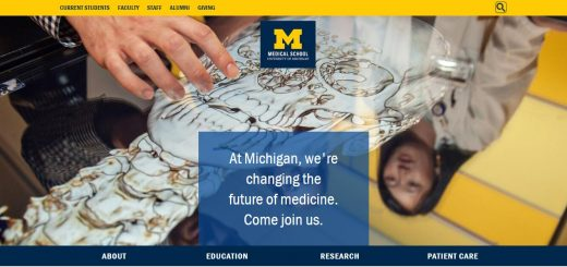 University of Michigan--Ann Arbor Medical School