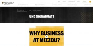 University of Missouri Undergraduate Business