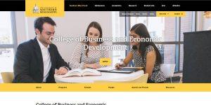 University of Southern Mississippi Undergraduate Business
