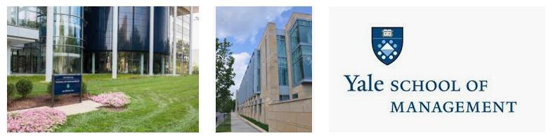 School of Management at Yale University