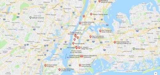 Top Nursing Schools in New York