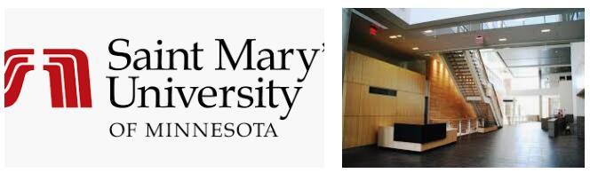 University of Minnesota--Twin Cities Business School