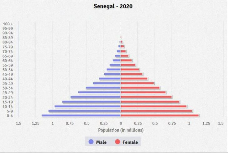 Age structure of the population 2020