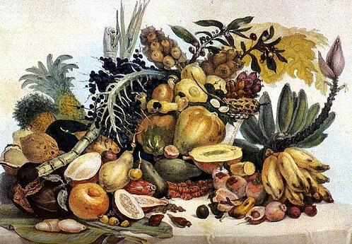 Albert Eckhout (1610-1665), Brazilian fruits