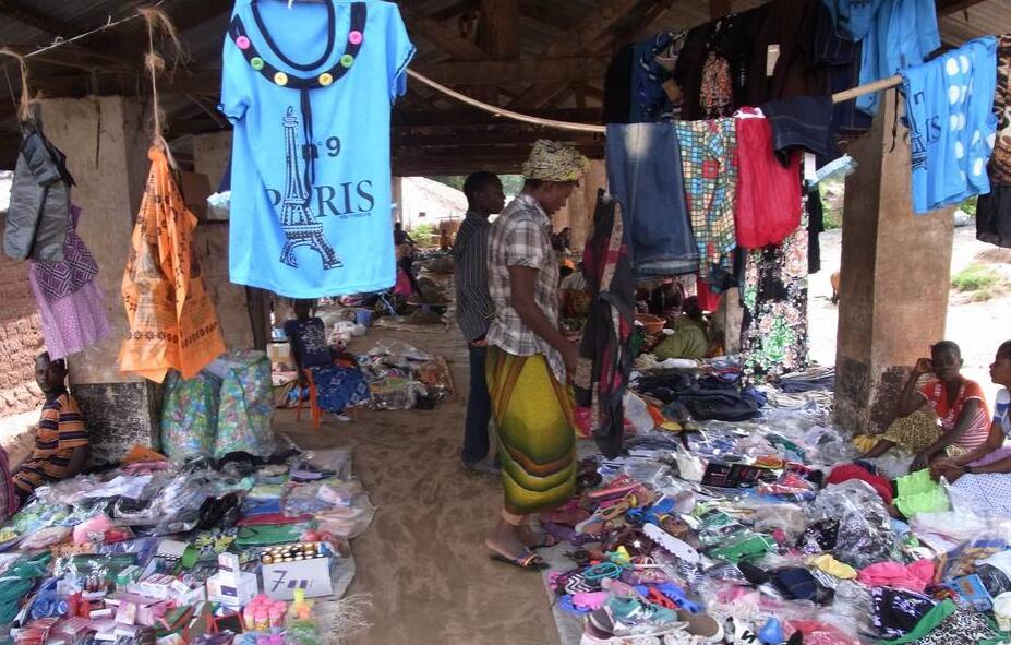 Economic Sectors in Democratic Republic of the Congo