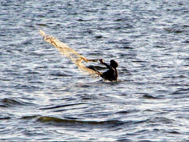 Fishing in the Sine Saloum Delta