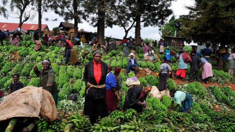 Kenya Economy