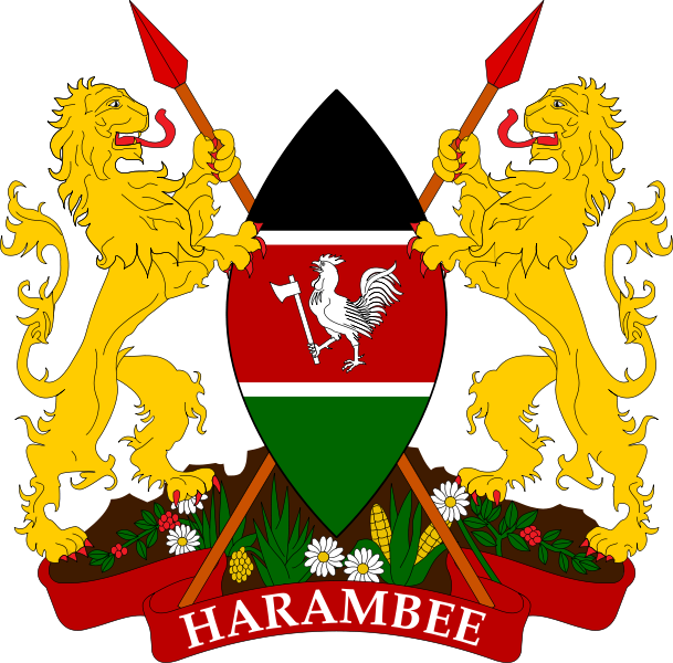 Maasai shield in the national colors of green-red-black