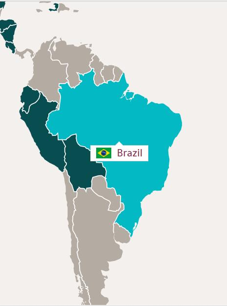 TV and Film Production in Brazil