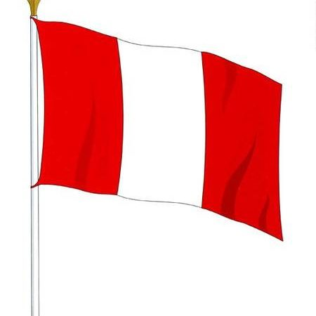 Peru Domestic Politics 2