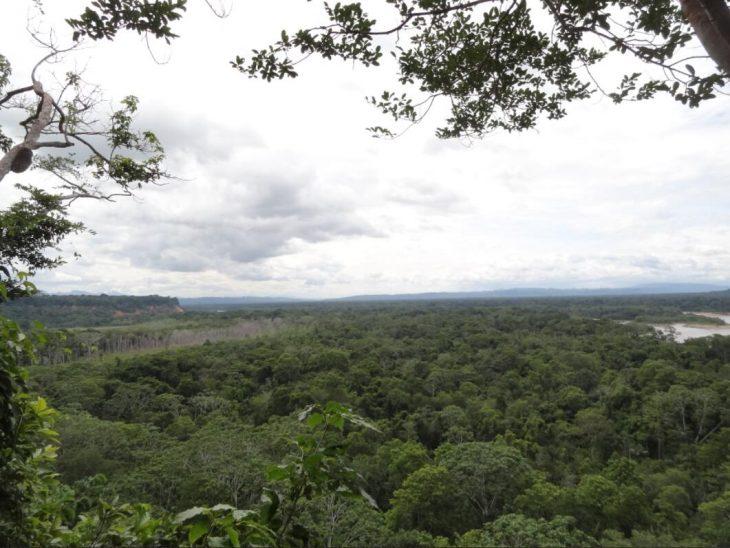 The Madidi National Park
