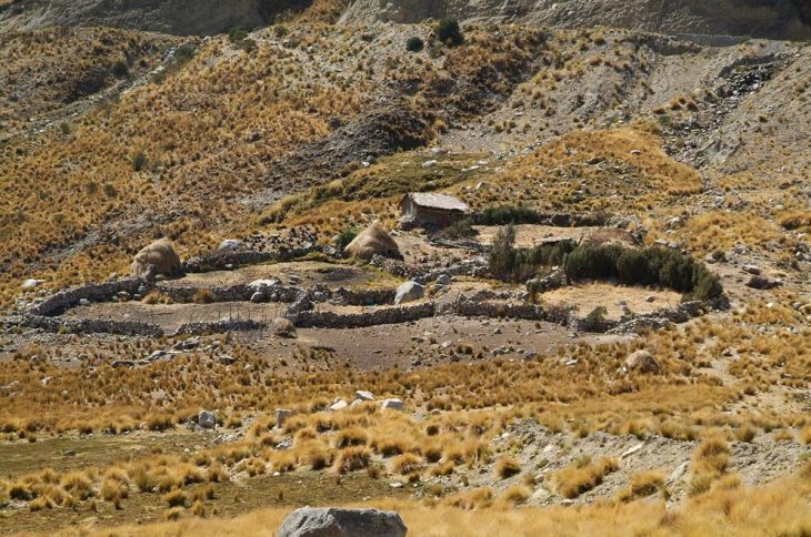The barren mountains with vicuñas