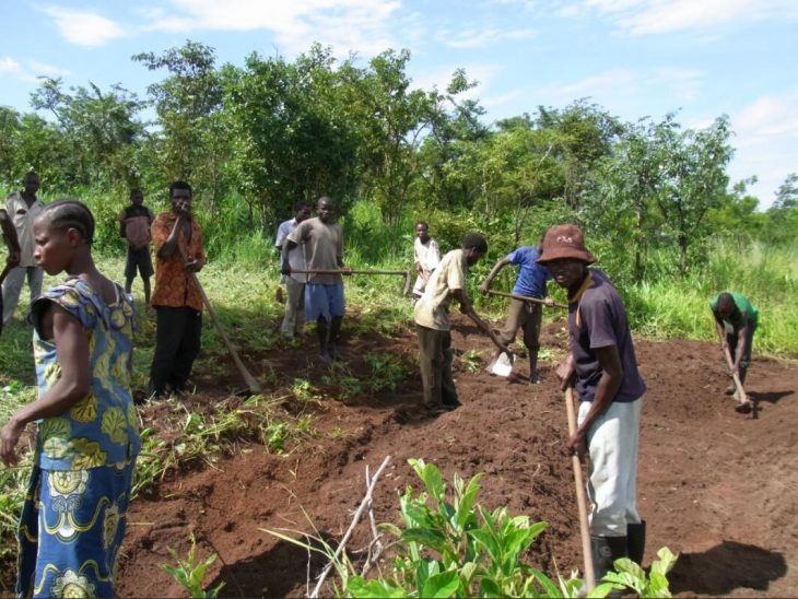 The majority of the Congolese live from subsistence agriculture
