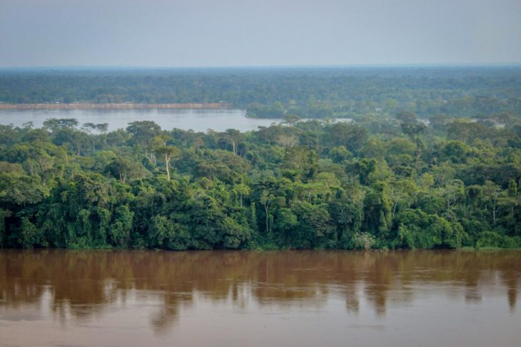The second largest rainforest region in the world is located in the Congo