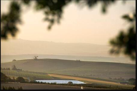 Wine farm in the Western Cape