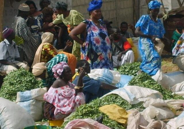 Senegal Agriculture