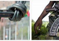 Arms Trade Treaty 2